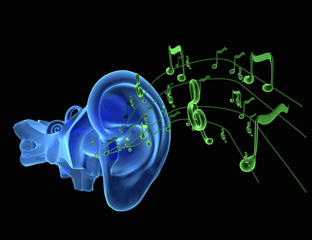 In Ear Monitors for Musicians